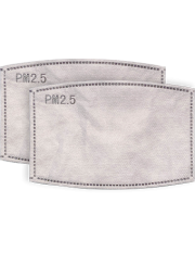 Disposable KN95 Filters for Face Mask - 2 pack