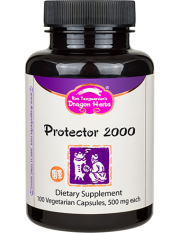 Protector 2000