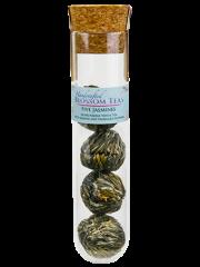 Tea Tubes: Five Jasmine Blossom Tea
