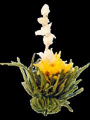 Five Jasmines Blossom Tea, 9 bulb pack