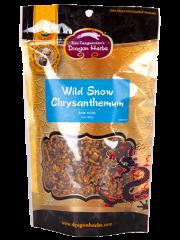 Wild Snow Chrysanthemum