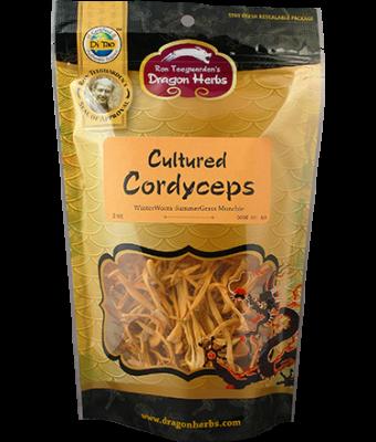 Cultured Cordyceps - Munchable Cordyceps