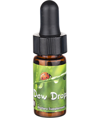 Dew Mini Drops