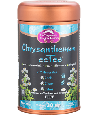 Chrysanthemum eeTee in Jar