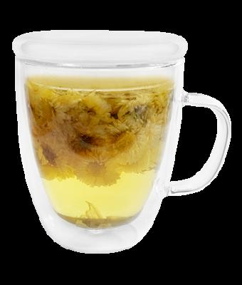 Insulated Glass Mug with Lid 15 oz.