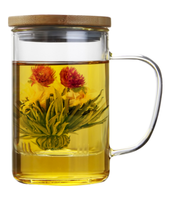 Glass Brewing Mug with Strainer and Bamboo Lid 450 ml