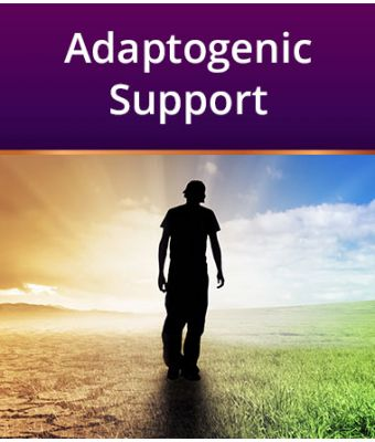 Adaptogenic Support