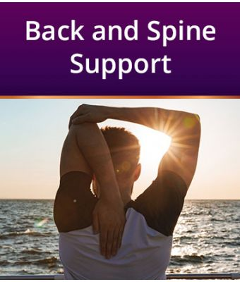 Back and Spine Support