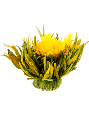 Celestial Fusion Blossom Tea, 10 bulb pack
