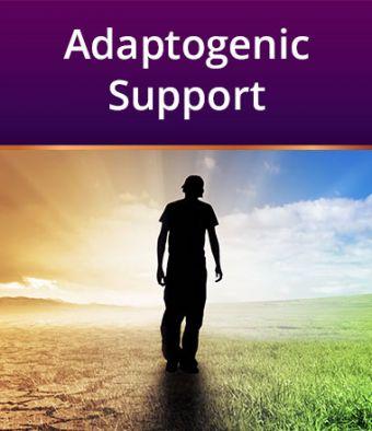 Adaptogenic Support