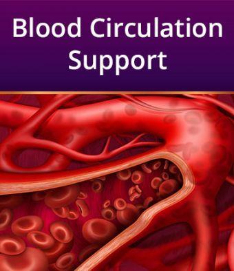 Blood Circulation Support