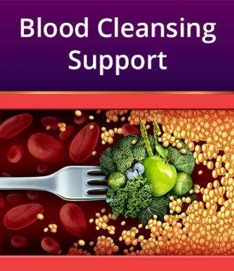 Blood Cleansing Support
