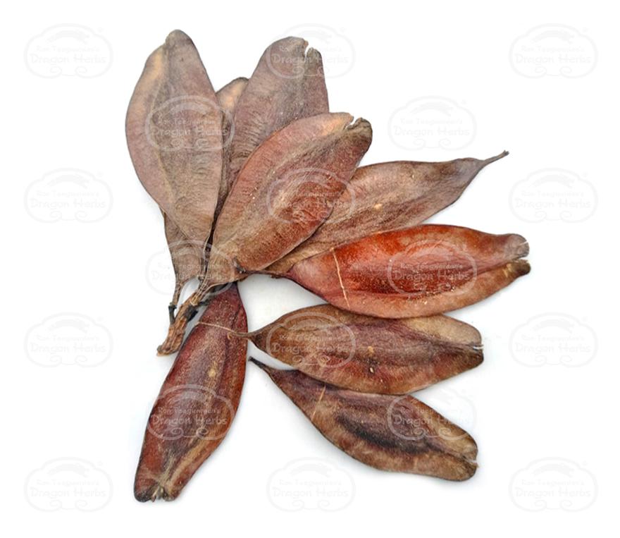 Eucommia Seed