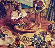 Cistanche Shenong