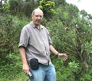 Ron In Search Of Ginseng