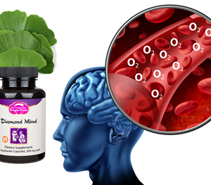 Gingko biloba in the Diamond Mind formula helps support cognition by increased oxygen delivery through the brain cells