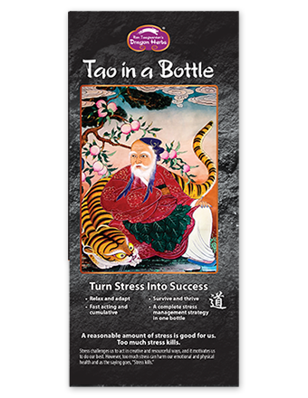 Tao in s bottle brochure