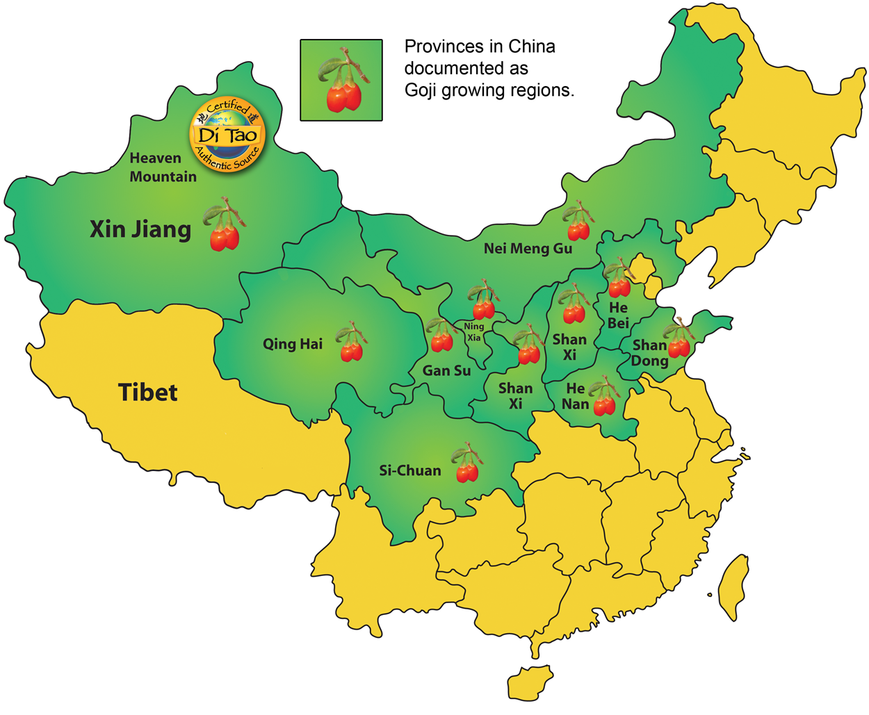 Goji growing provinces in China