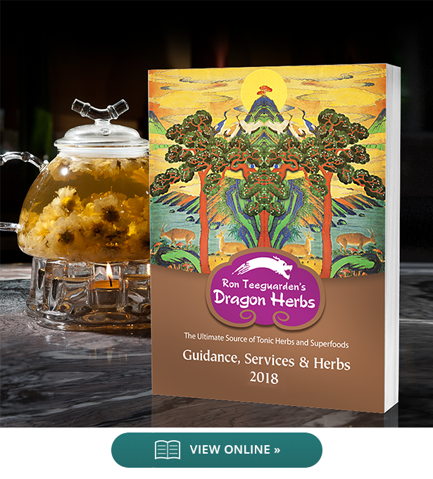 Catalog 1 - Guidance, Services and Herbs