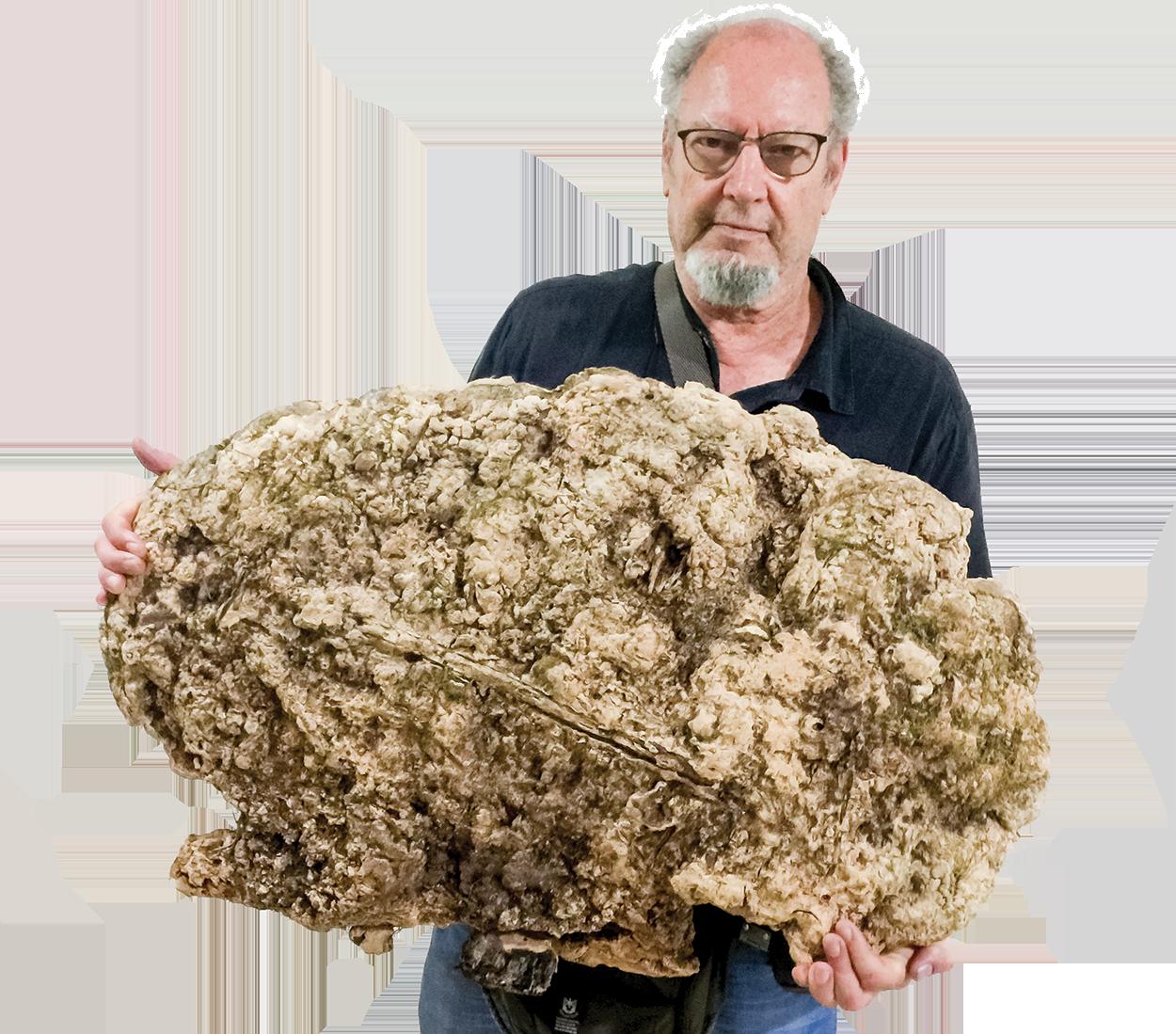 Ron holds giant Reishi
