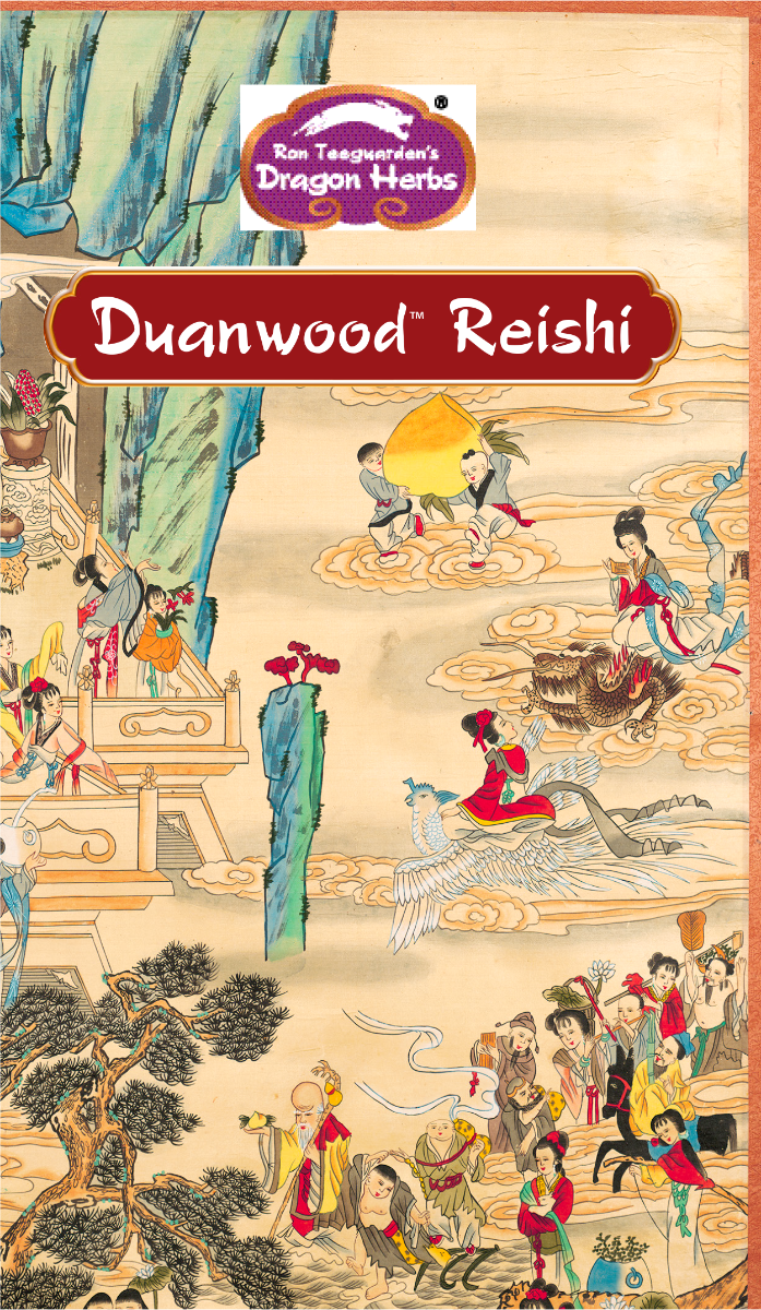 reishi-brochure-cover-page