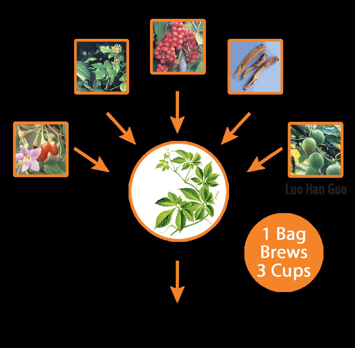 sip-technology-illustration