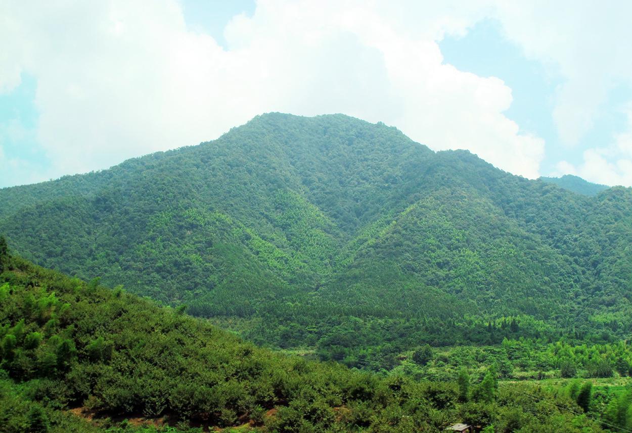 wuyi-mountain