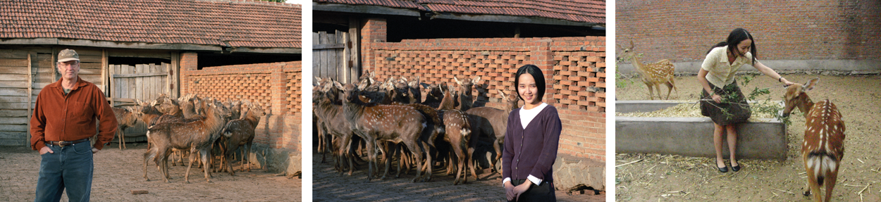 Ron And Yanlin With Deer
