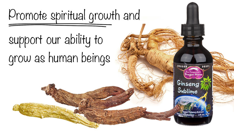 Ginseng Sublime
