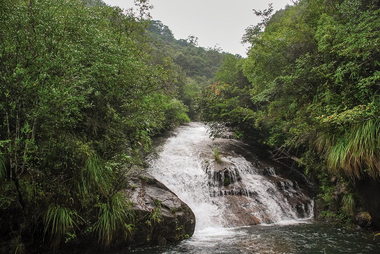 Wuyi Mountain River